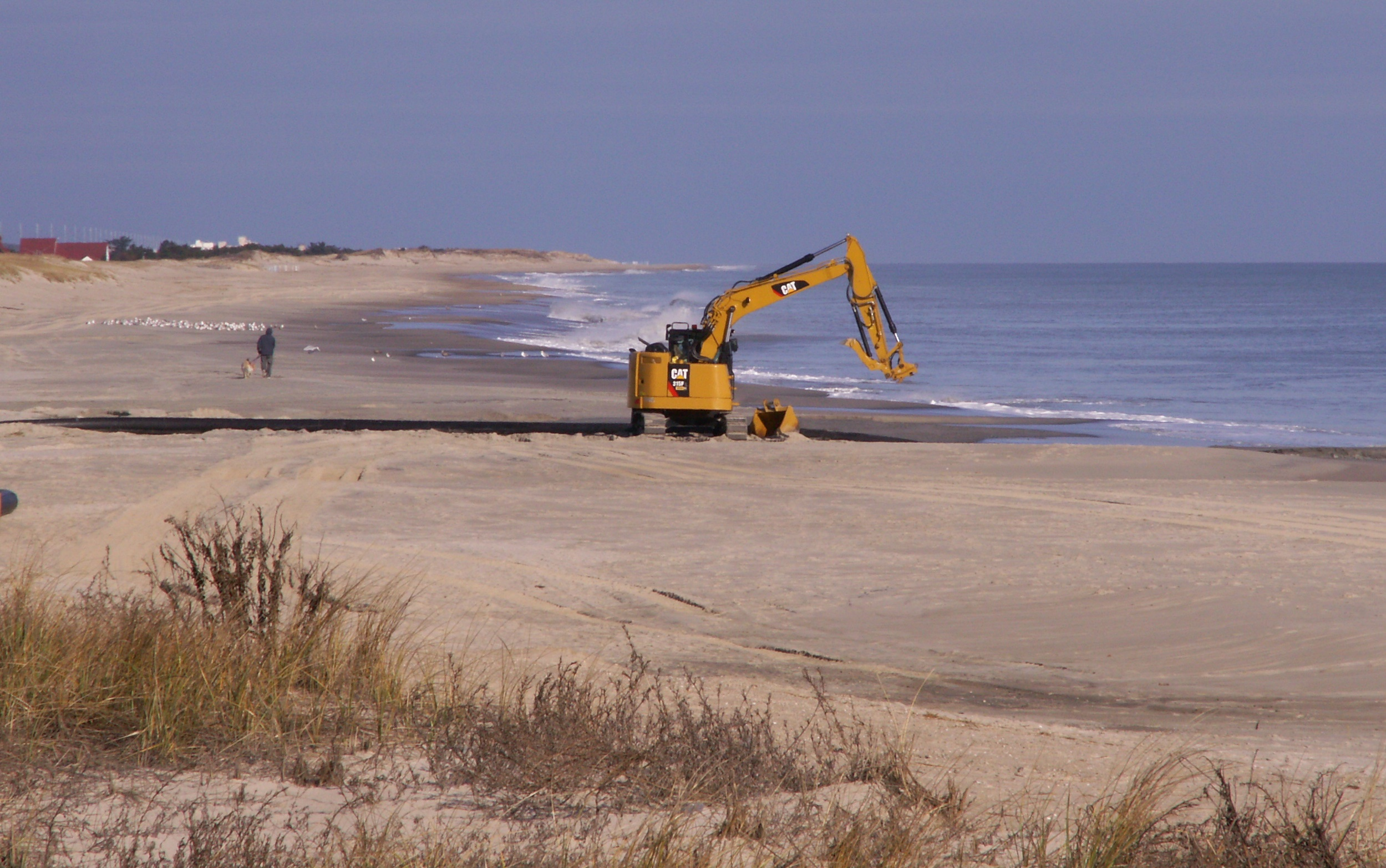 """Featured image for """"Fishermen, scientist praise increased dredging in Sussex waters"""""""