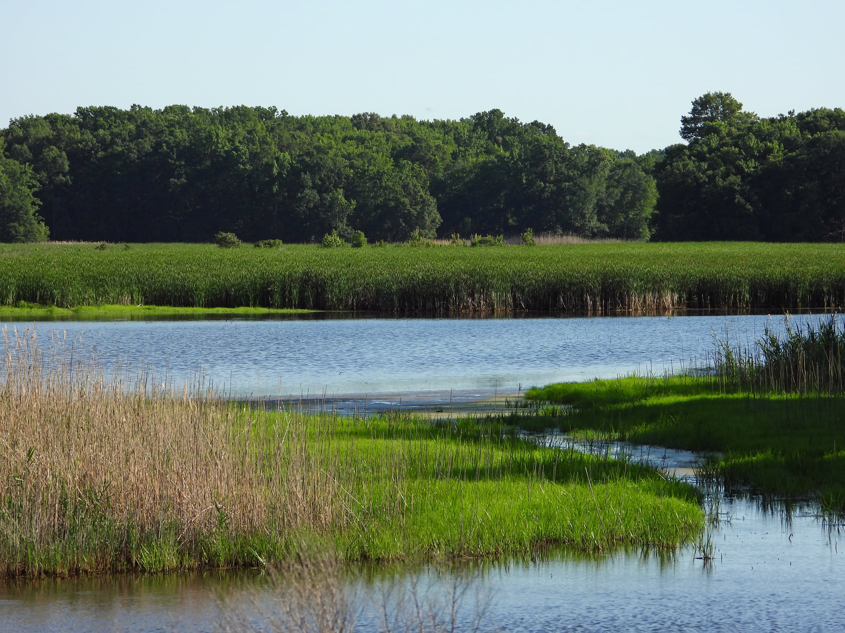 """Featured image for """"$80 million Clean Water Act sets up trust to direct cash into projects"""""""